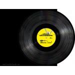 "The Groupies - Are Insane (Baltermore) 12"" vinyl"