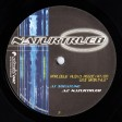 Analogue Audio Association - Naturtrueb (Placid Records) 12''