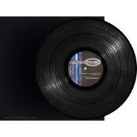 Analogue Audio Association - Naturtrueb (Placid Records) 12''