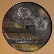 Sophus Y. Lie - Endomorphism (Yuyay Records) 12'' vinyl